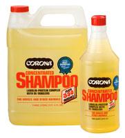 coronashampoo